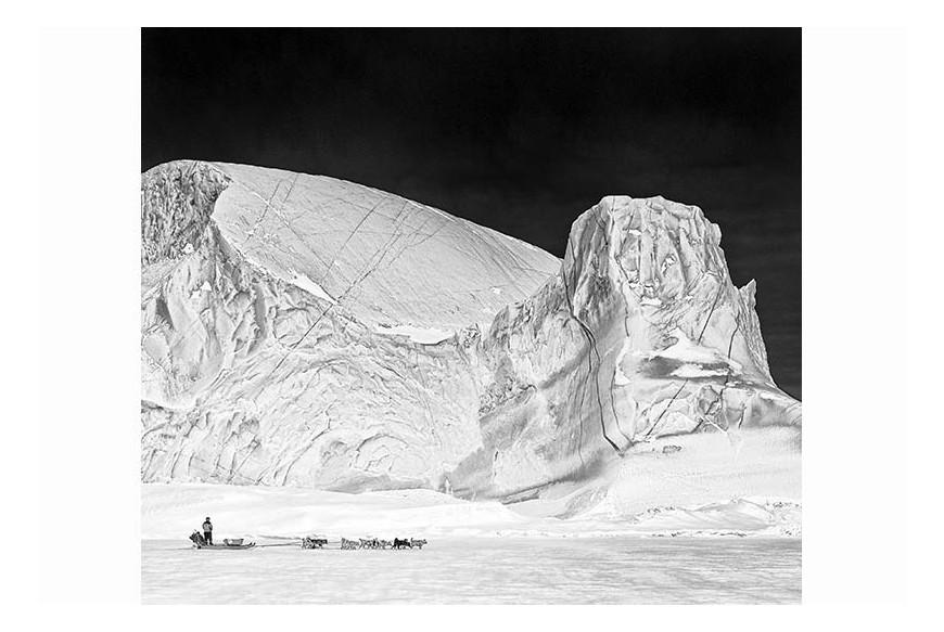 Carsten Egevang© - Scoresbysund, Groenlandia, 2012